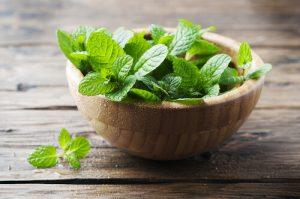Toothache Herbal Remedies
