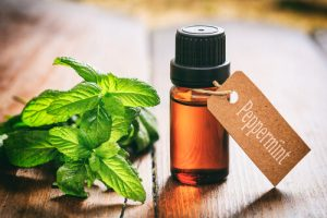 essential oils for a cold sore